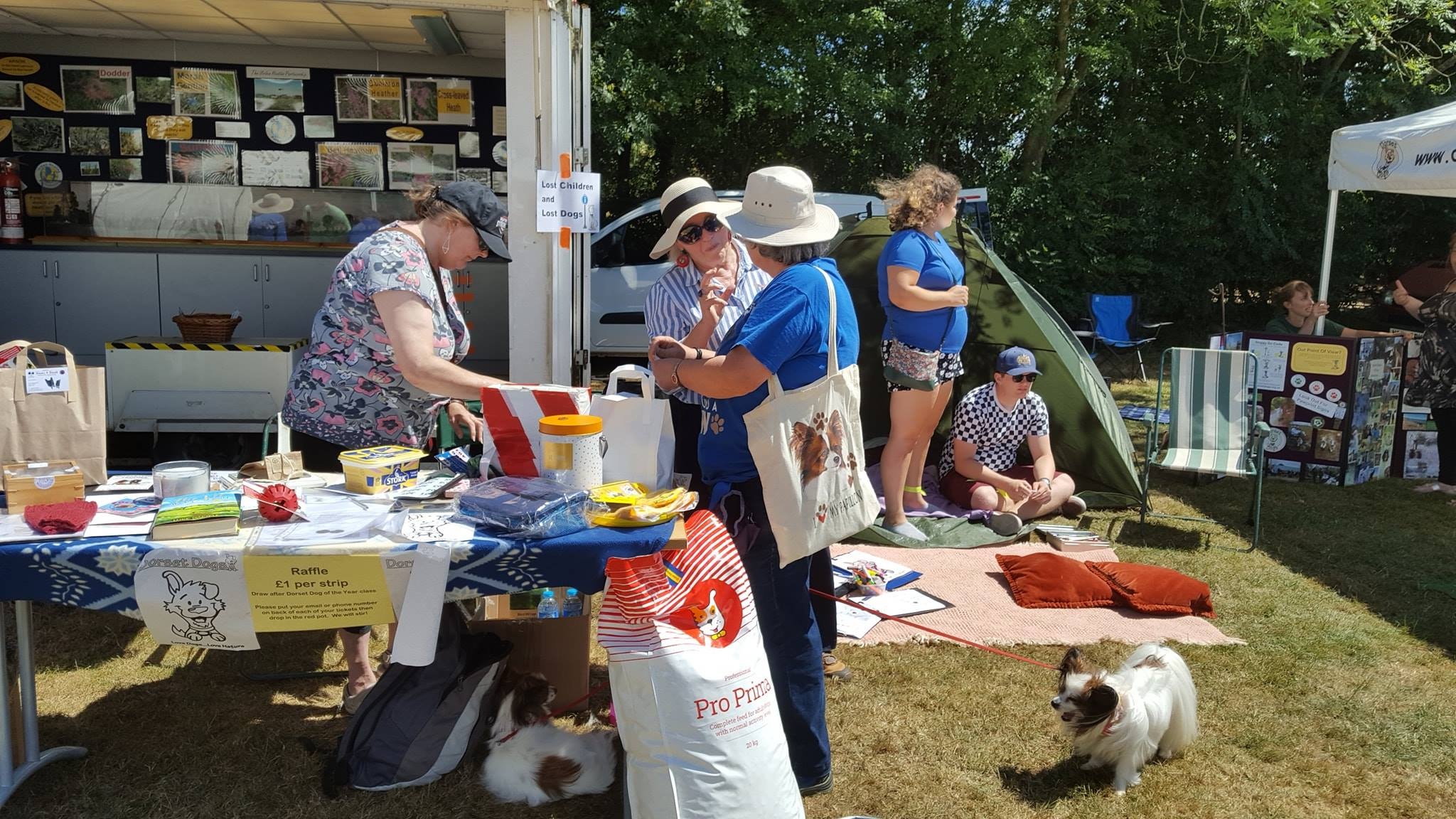 More volunteers at work at the Dorset Dogs Festival, on the raffle table and at a children's tent.