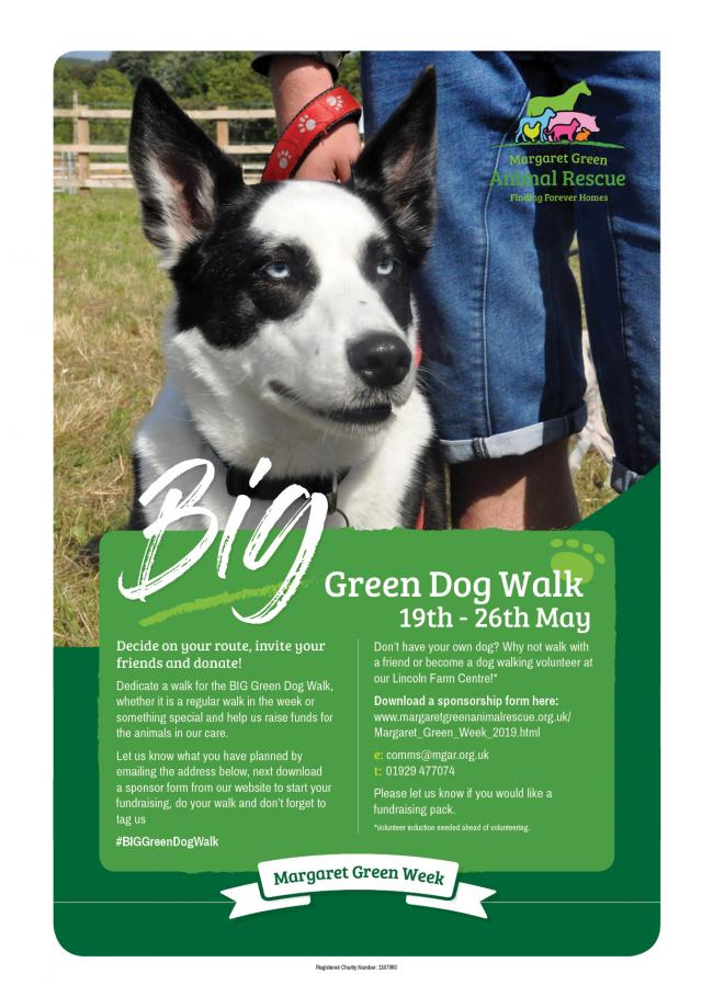 Big Green Dog Walk Poster JPEG