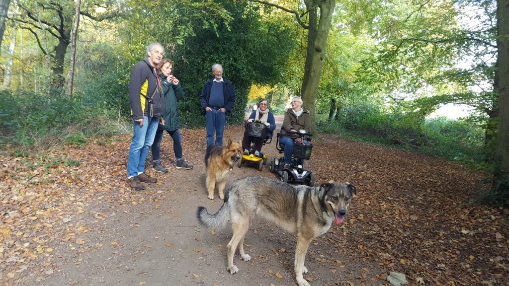 mobility scooter walkies at Upton Country Park