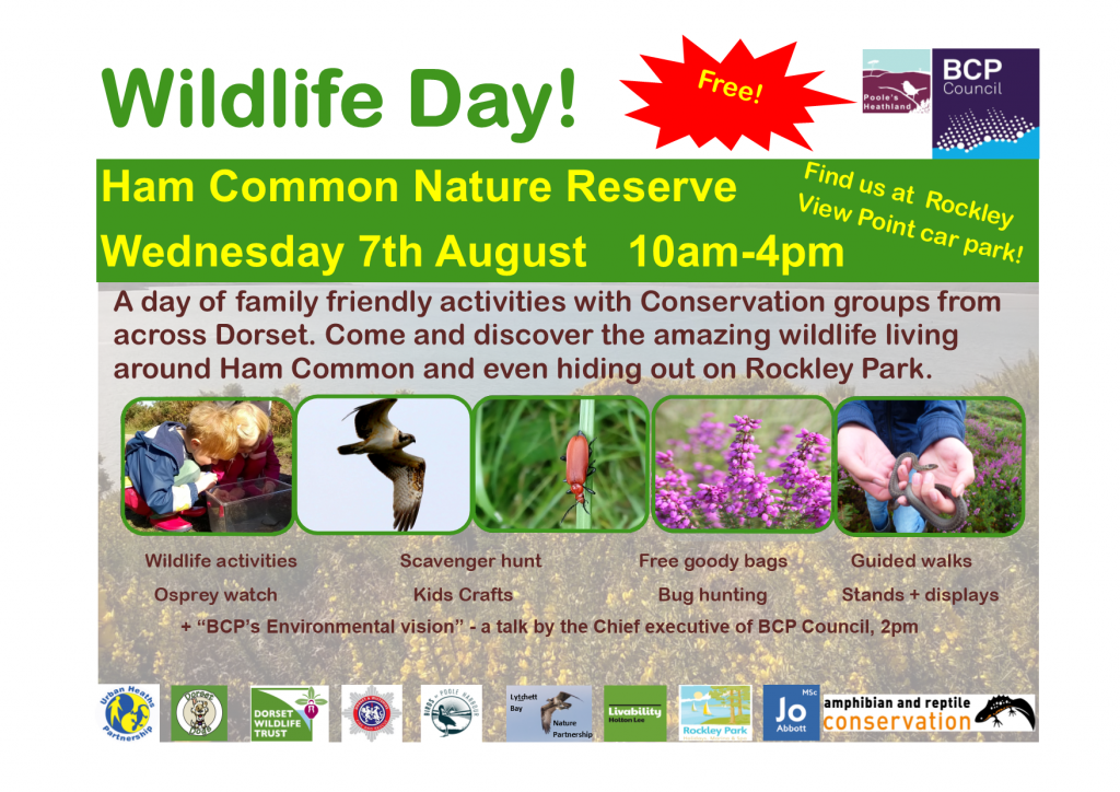 Wildlife day poster