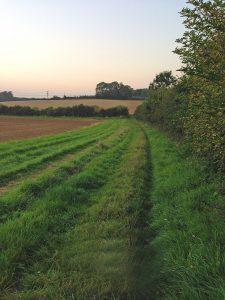 Stafford Farm footpath
