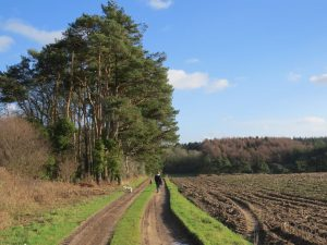 Southover Farm footpath