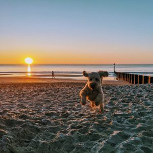 Colin flying on the beach photo by AdamAdam