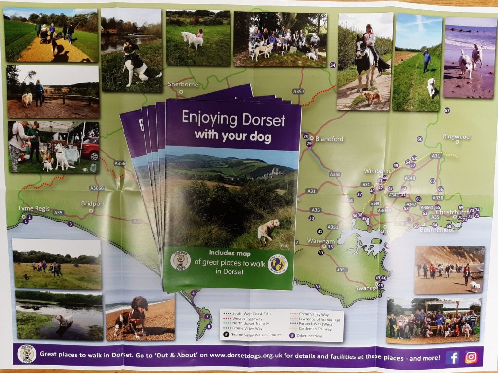 Enjoying Dorset Leaflet map page photo