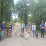 Goupr of people and on and off lead dogs at walkies on Forest track