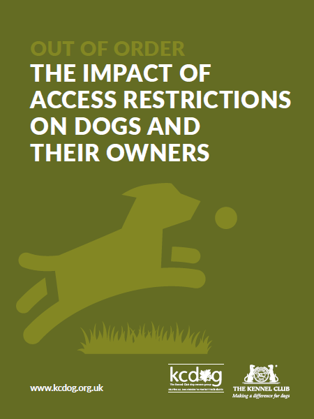 Report cover with stylised dog jumping for a ball